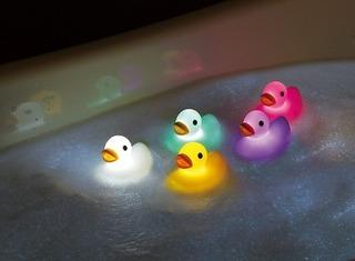 duck_image2.jpg